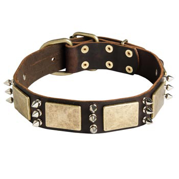 War-Style Leather Dog Collar for Belgian Malinois