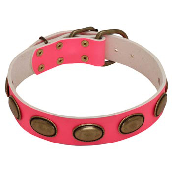 Pink Leather Belgian Malinois Collar for Female Dogs