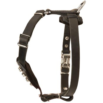 Leather Belgian Malinois Puppy Harness for Comfy Walking