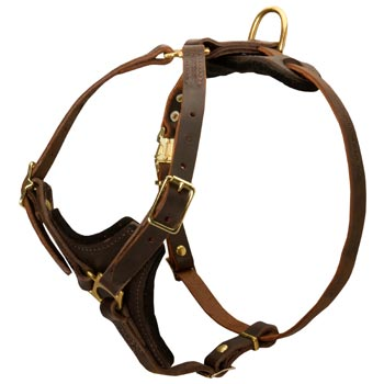 Belgian Malinois Harness Y-Shaped Brown Leather Easy Adjustable for Best Fit