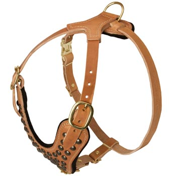 Studded Tan Leather Belgian Malinois Harness