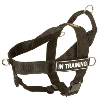 Belgian Malinois Nylon Harness with ID Patches