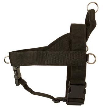 Belgian Malinois Harness Nylon for Comfy Walking