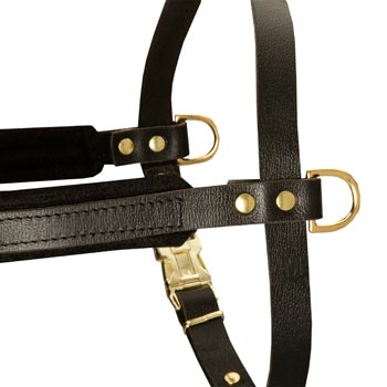 Training Pulling Belgian Malinois Harness with Sewn-In Side D-Rings