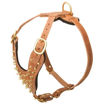 Walking Leather Harness for Belgian Malinois
