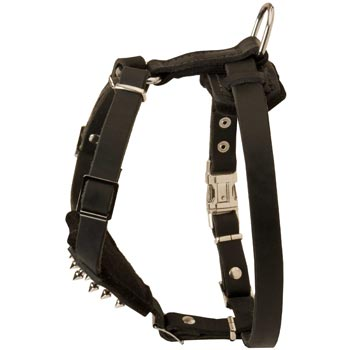 Belgian Malinois Leather Harness for Puppy Walking and Training