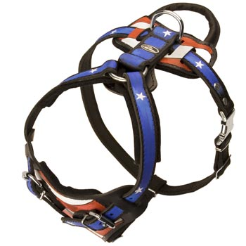 Leather Belgian Malinois Harness with Handle Stitched to Back Plate