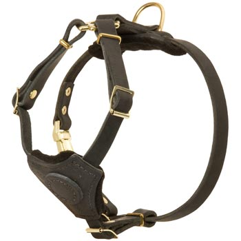 Light Weight Leather Puppy Harness for Belgian Malinois