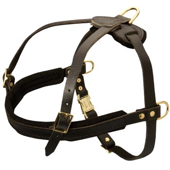 Leather Belgian Malinois Harness for Dog Off Leash Training