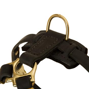 D-ring on Leather Belgian Malinois Harness for Puppy Training