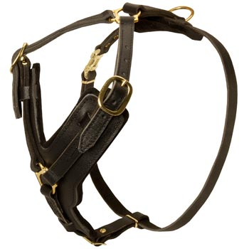 Comfortable Y-Shaped Leather Harness for Belgian Malinois Attack  Training