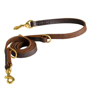 Strong Leather Leash for Belgian Malinois Successful Training
