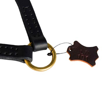 Belgian Malinois Leather Coupler with Rust-proof O-ring