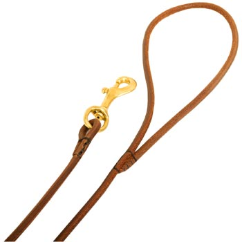 Leather Belgian Malinois Leash with Comfy Round Hnadle