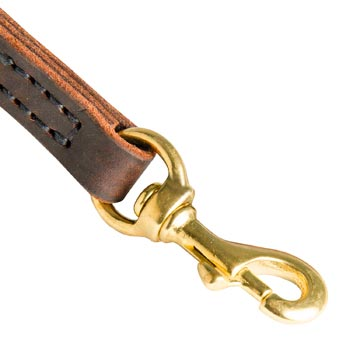 Belgian Malinois Leather Leash with Brass Hardware