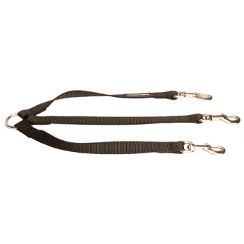 Triple Nylon Leash for Walking 3 Belgian Malinois Dogs