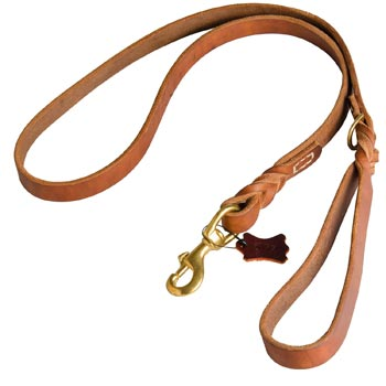 Canine Leather Leash for Belgian Malinois