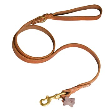 Training Leather Belgian Malinois Leash with Handle