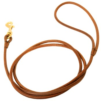 Leather Round Leash for Belgian Malinois Elegant Look