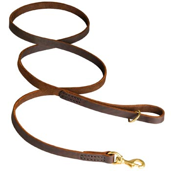 Classic Stitched Leather Belgian Malinois Leash