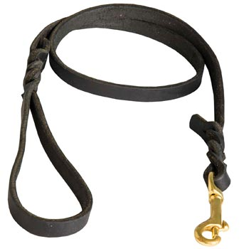 Training Leash for Belgian Malinois