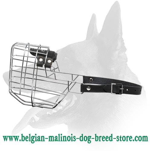 'The Silencer' Wire Cage Belgian Malinois Muzzle With One Strap