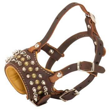 Belgian Malinois Muzzle Leather Browne with Spikes and Studs