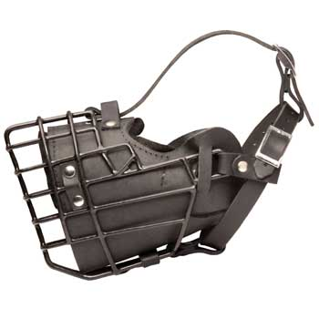Leather BREED-NANE Muzzle Padded Metal Basket