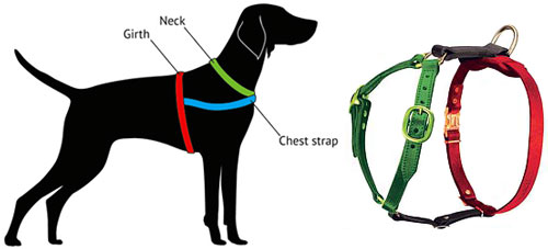 measure-harness